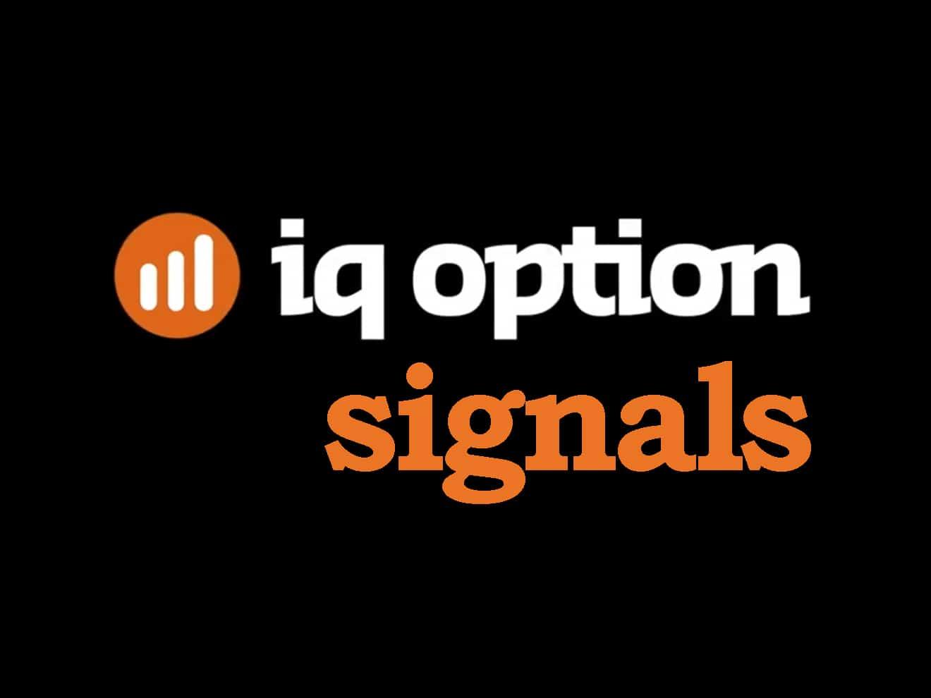 Ifollow binary options